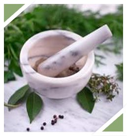 natural remedies plant image