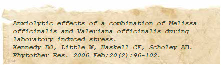 valerian anxiety research paper image 2